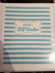The Extraordinary Burden Of Ieps On Moms >> Surviving Our First Iep